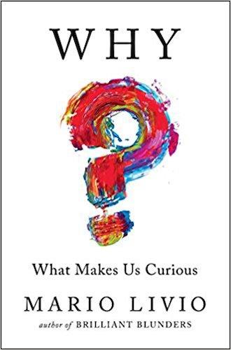 ¿Qué nos hace curiosos?